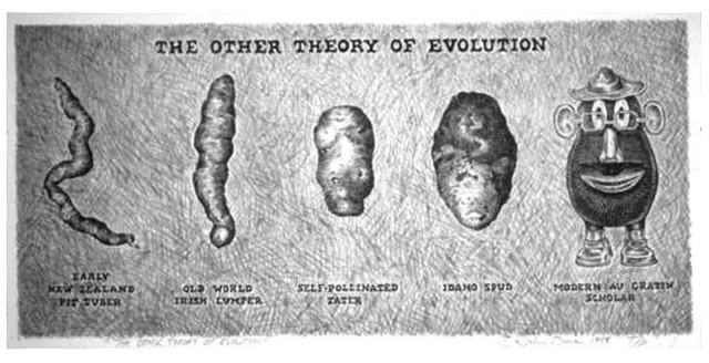 The Other Theory of Evolution